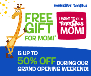 picture of I want to be a Toys R US Mom
