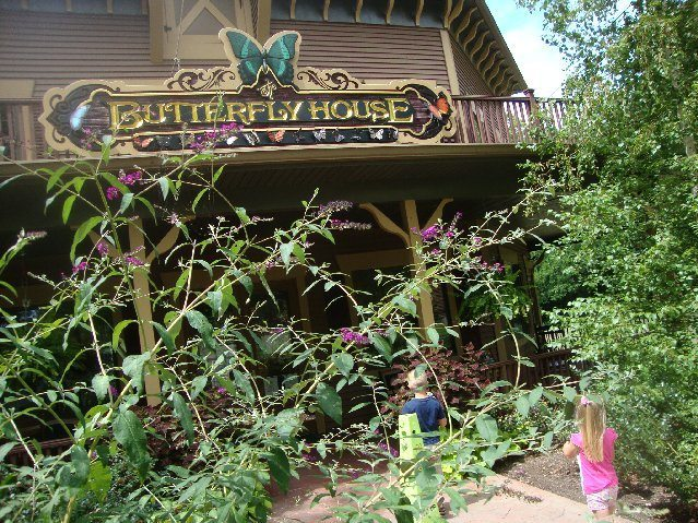 picture of Butterfly House at Put-in-Bay