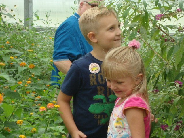 picture of Kids love the Butterfly House on South Bass Island