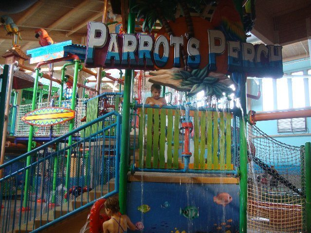 picture of Parrot's Perch at CoCo Key Ohio Indoor Waterpark