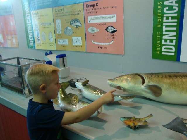 picture of Ohio Division of Wildlife Display