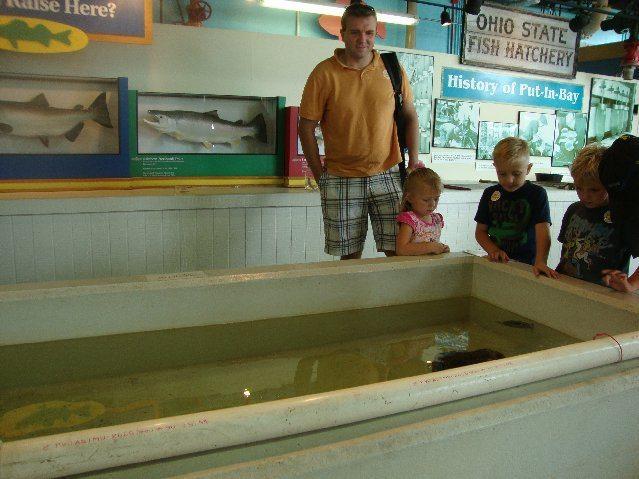 picture of Ohio Division of Wildlife Fish Tank
