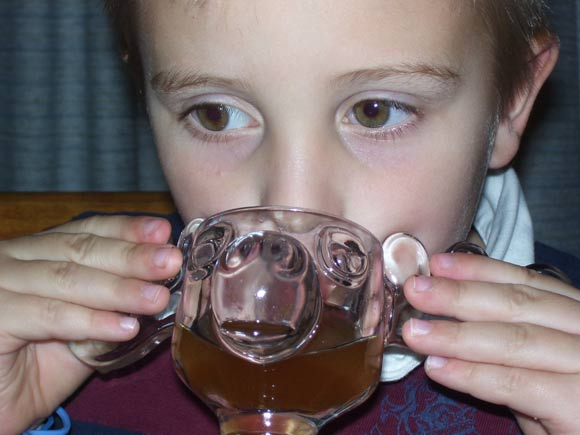 The Gourmet Cupboard Apple Cider from a Moose Mug