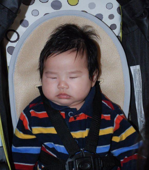 picture of Comfortable Sweatless Baby with MeenoBabies Seat Liner