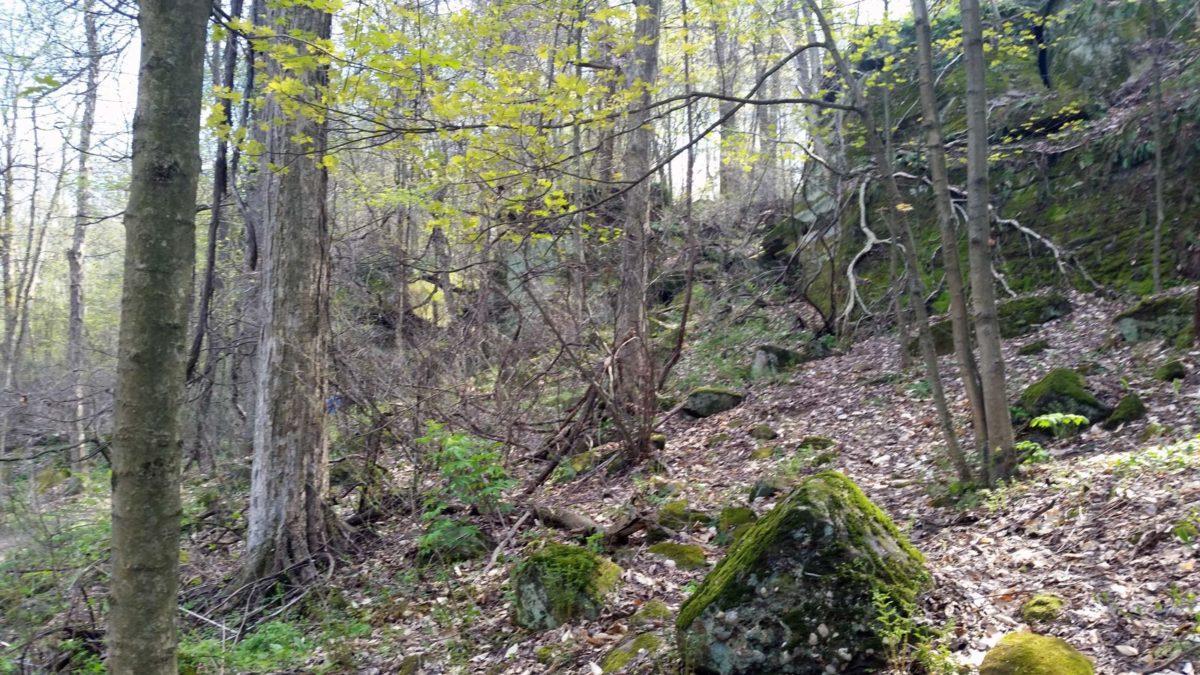 Twinsburg-Ohio-Liberty-Park-Cave-333