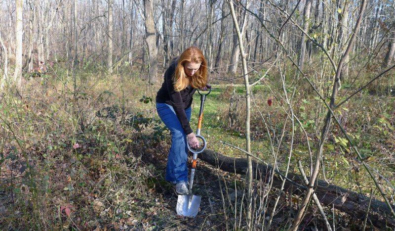 Best shovel ever