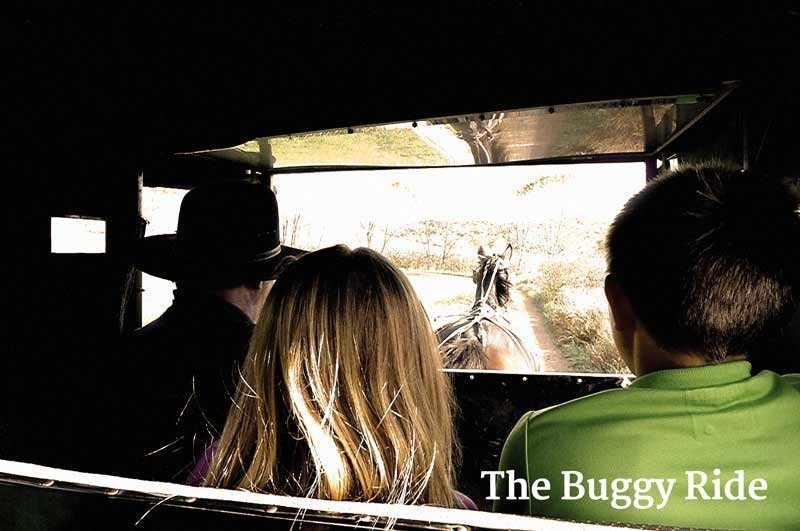 buggy-ride