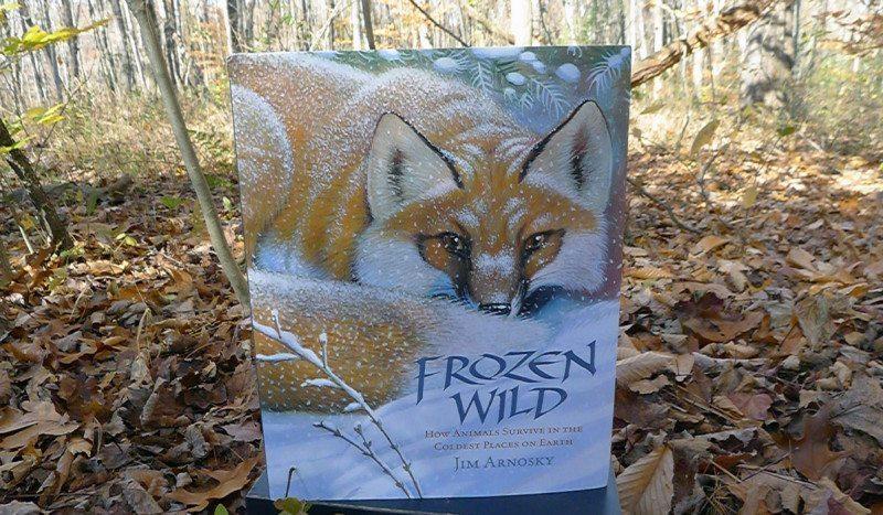 frozen wild kids book