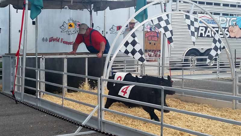 Ohio State Fair 2016 Review (10)