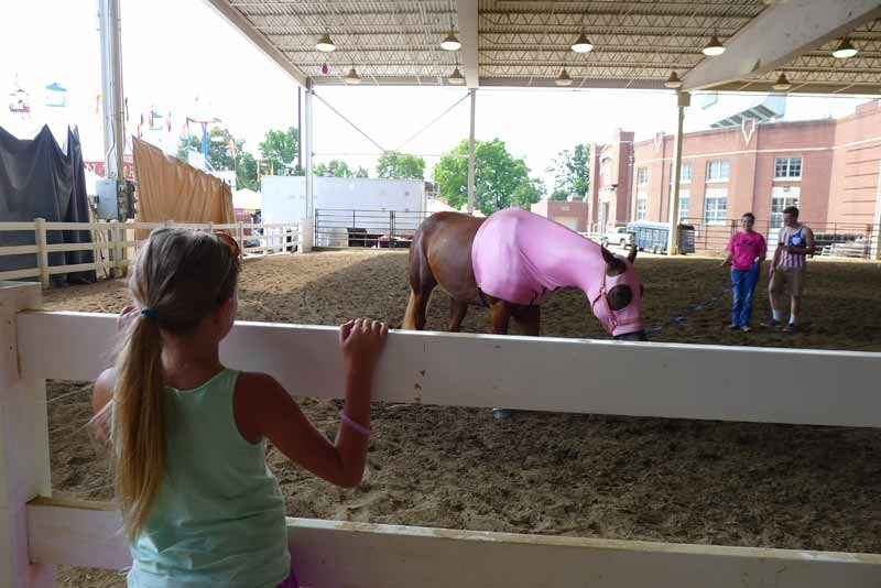 Ohio State Fair 2016 Review (38)