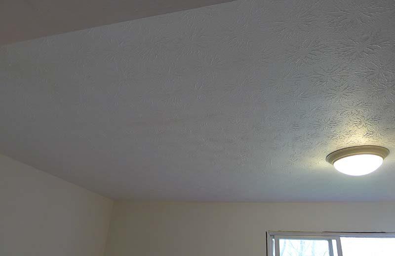 ceilingpaint1