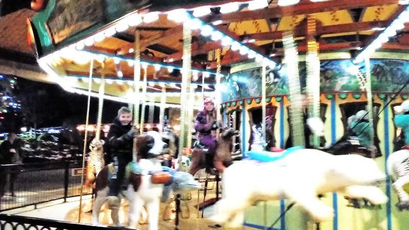 akron-zoo-lights-photos3