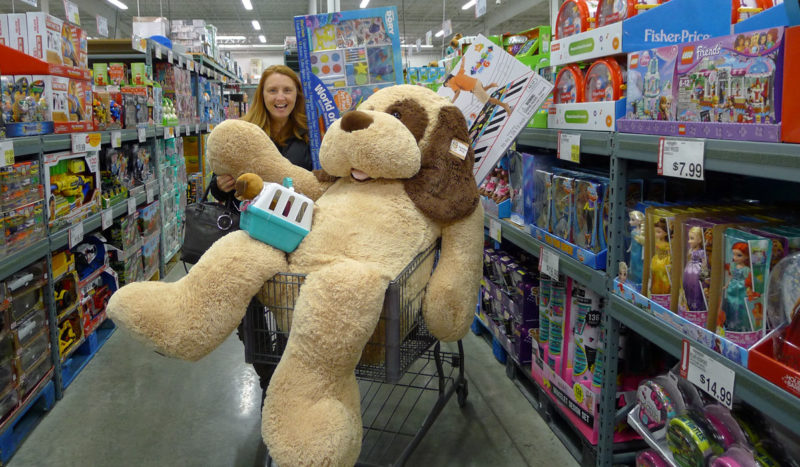 Top 10 Toys at BJ's