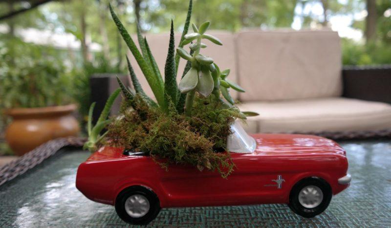 Teleflora Dream Wheels '65 Ford Mustang