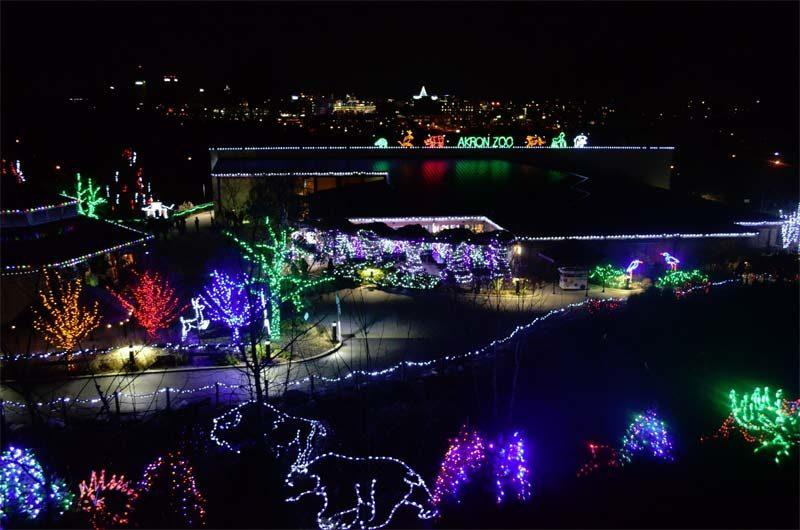 Wild-Lights-Akron-Zoo