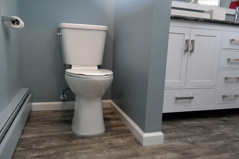 mansfield plumbing vanquish toilet review