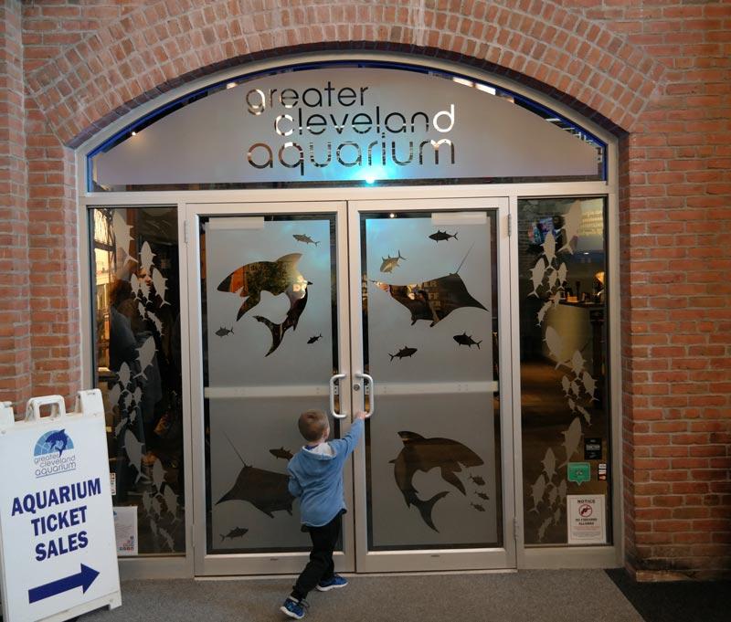 Greater Cleveland Aquarium Updates
