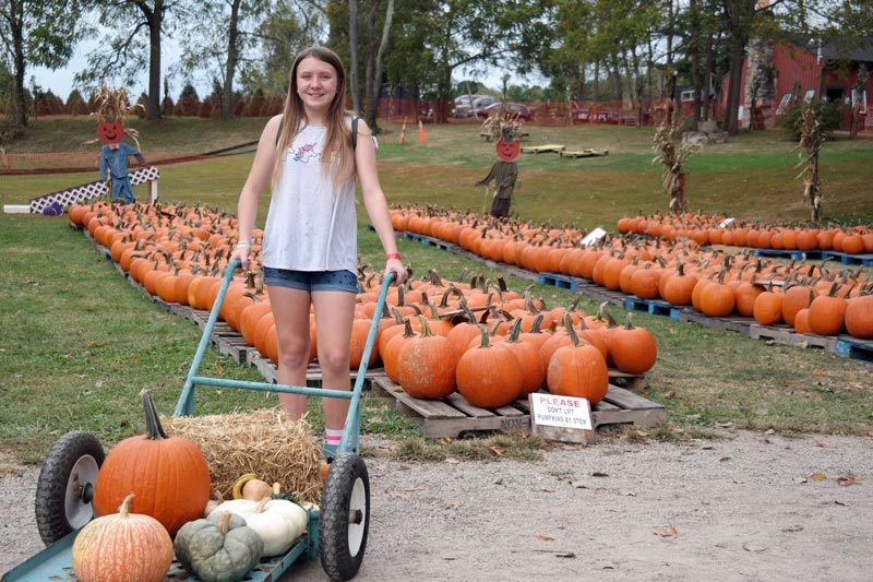pumpkin patch peninsula ohio akron